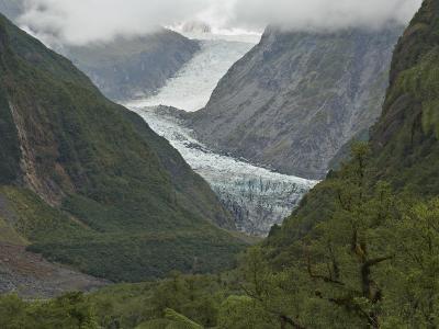 Fox Glacier, Westland, South Island, New Zealand, Pacific-Schlenker Jochen-Photographic Print