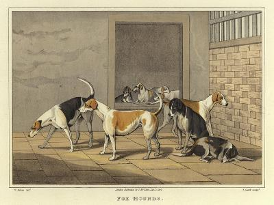 Fox Hounds-Henry Thomas Alken-Giclee Print