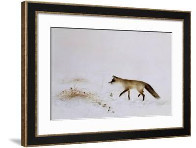 Fox in Snow-Jane Neville-Framed Giclee Print