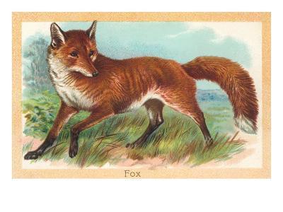 Fox in the Meadow--Art Print