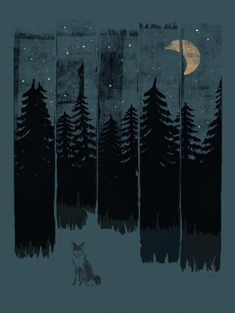 https://imgc.artprintimages.com/img/print/fox-in-the-wild-night-rectangle3_u-l-f940ea0.jpg?p=0