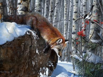 Fox in Winter-Kevin Daniel-Art Print