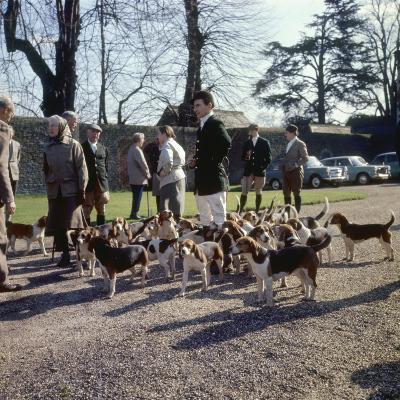 Fox Meet, Surrey 1960s--Photographic Print