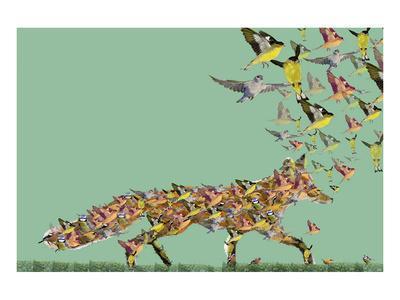 https://imgc.artprintimages.com/img/print/fox-of-birds_u-l-f8mtor0.jpg?p=0