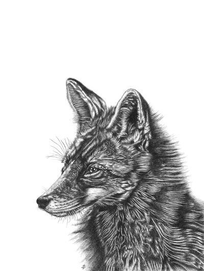 Fox--Giclee Print