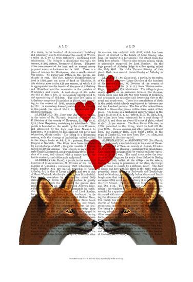 Foxes in Love-Fab Funky-Art Print