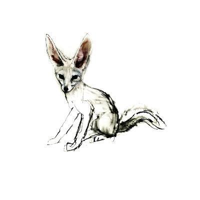 Foxy (Sand Fox), 2009-Mark Adlington-Giclee Print