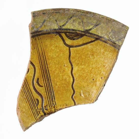 Fragment d'une aile de coupe--Giclee Print