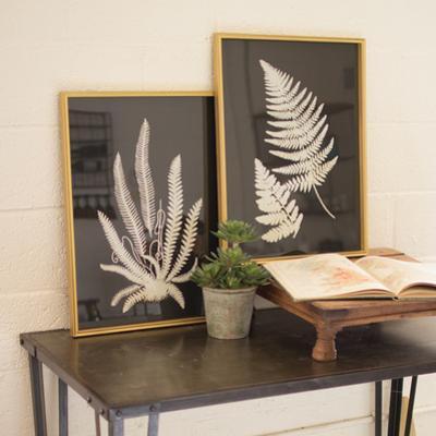 Framed Fern Print Pair