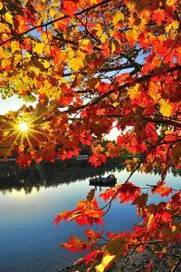 Autumn on the Lake by FrameworthyFotography by Thadd