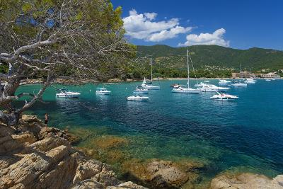 France, Cote D'Azur, Bathing Bay-Chris Seba-Photographic Print