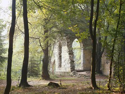 France, Haute-Savoie, Forest, Church Ruin, Near Chamonix-Thonig-Photographic Print