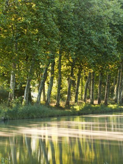 France, Languedoc-Rousillon, Canal Du Midi-Katie Garrod-Photographic Print