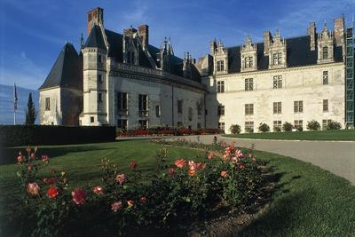 https://imgc.artprintimages.com/img/print/france-loire-valley-chateau-d-amboise-13th-century_u-l-ppy9az0.jpg?p=0