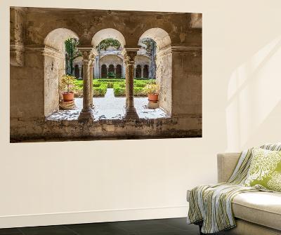 France, Provence Alps Cote D'Azur, Saint Remy De Provence. Monastère St. Paul-De-Mausole, Cloister-Matteo Colombo-Wall Mural