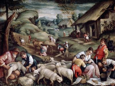 Summer. Sheep Shearing, C1570-C1580