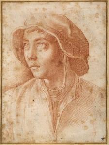 Bust Portrait of a Boy Wearing a Cap by Francesco De Rossi Salviati Cecchino