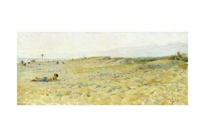 Beach in Cinquale