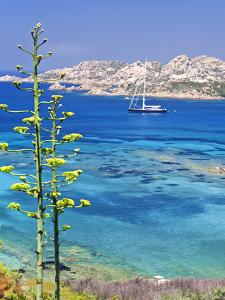 Italy, Sardinia, Olbia-Tempio District, Arcipelago 'La Maddalena' National Park, La Maddalena by Francesco Iacobelli