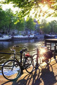 Netherlands, North Holland, Amsterdam by Francesco Iacobelli
