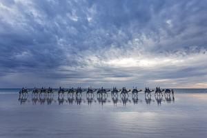 Cable Beach, Western Australia. Camels on the shore at sunset by Francesco Riccardo Iacomino