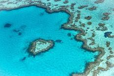 Heart reef in the Great Barrier Reef from above, Queensland, Australia.-Francesco Riccardo Iacomino-Photographic Print
