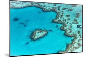 Heart reef in the Great Barrier Reef from above, Queensland, Australia. by Francesco Riccardo Iacomino