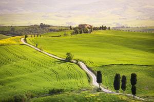 Pienza, Val d'Orcia, Tuscany by Francesco Riccardo Iacomino