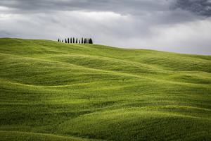 Tuscany, Val D'Orcia, Italy. Cypress Trees in Green Meadow Field with Clouds Gathering by Francesco Riccardo Iacomino