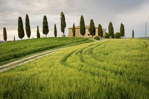 Val D'Orcia, Tuscany, Italy. a Lonely Farmhouse with Cypress Trees Standing in Line in Foreground. by Francesco Riccardo Iacomino