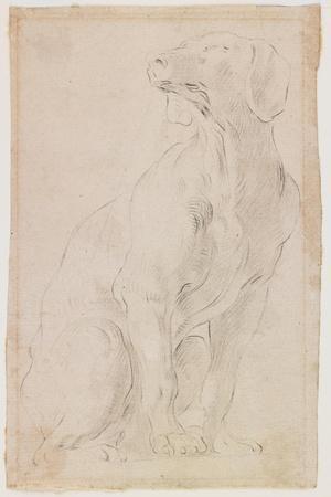 Seated Dog, 1710-1715