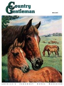 """Mares and Foals,"" Country Gentleman Cover, May 1, 1947 by Francis Chase"