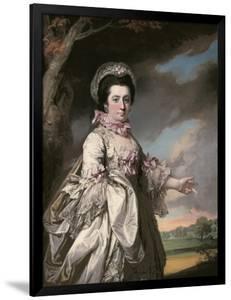 Elizabeth, Lady Jones, 1769 by Francis Cotes