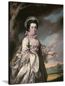 Elizabeth, Lady Jones, 1769 by Francis Cotes