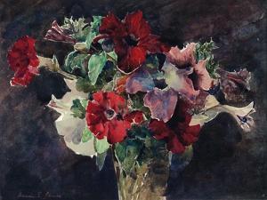 Petunias, C1869-1906, by Francis Edward James