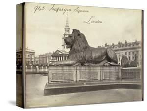 Stone Lion, Trafalgar Square, London, 19th Century by Francis Frith