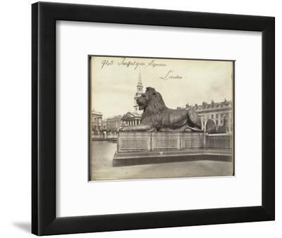 Stone Lion, Trafalgar Square, London, 19th Century
