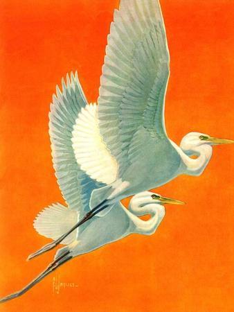 """""""Flying Storks,""""June 19, 1937"""