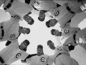 Chicago Cubs' Eight Coaches by Francis Miller