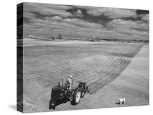 Spring Plowing in de Soto Kansas by Francis Miller