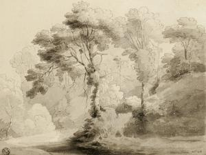 Wooded landscape, 1774 by Francis Towne