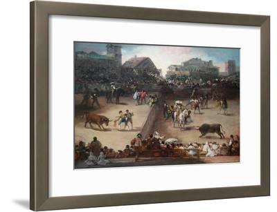 Bull Fight in a Divided Ring
