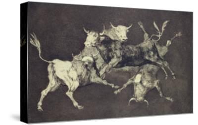 Folly of the Bulls, from the Follies Series, circa 1815-24 by Francisco de Goya