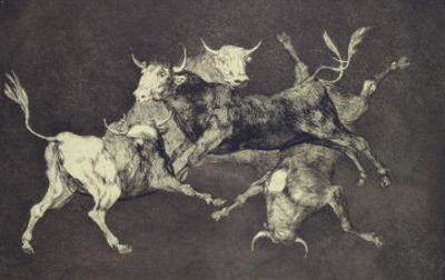 Folly of the Bulls, from the Follies Series, circa 1815-24 by Francisco de Goya