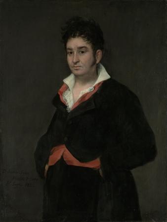 Portrait of Don Ramon Satue, 1823 by Francisco de Goya