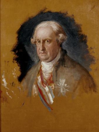 The Infante don Antonio Pascual de Borbón, 1800 by Francisco de Goya