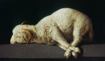 Agnus Dei (Lamb of God) by Francisco de Zurbar?n