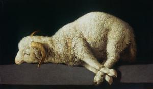 Agnus Dei (Lamb of God) by Francisco de Zurbarán