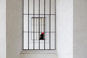 Red Cap by Franco Maffei
