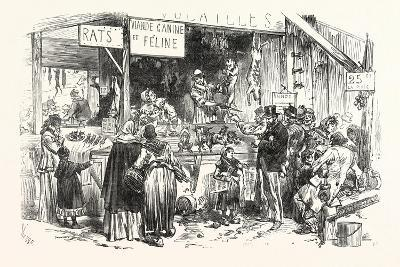 Franco-Prussian War: on the Market of St. Germain. at the Dogs and Cats Butcher. Fresh Rats--Giclee Print